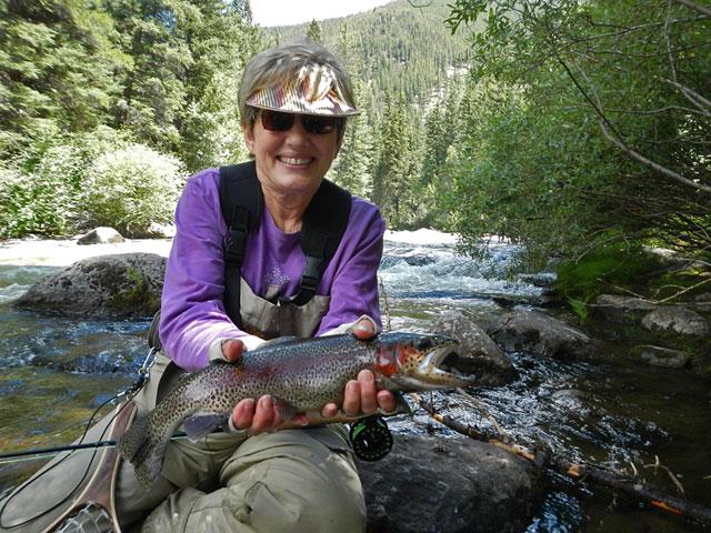 Virginia's rainbow trout