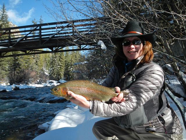 Peri's nice rainbow trout