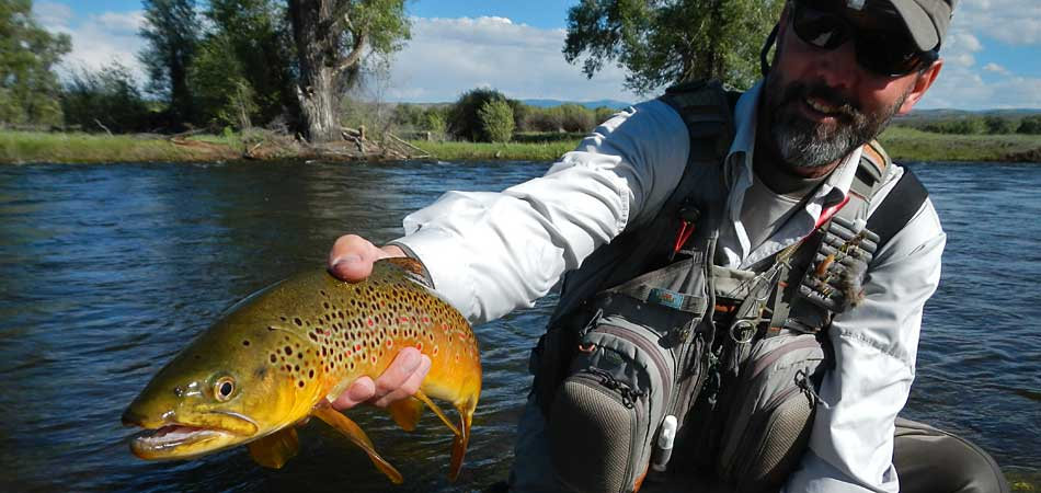 Guided fly fishing trips gunnison river taylor river for Gunnison river fishing