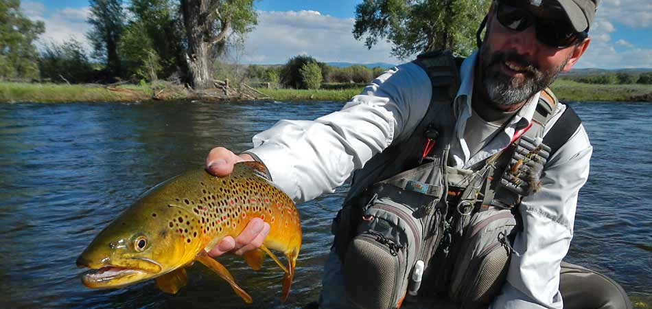 Fly fishing the western slope of colorado gunnison for Gunnison river fly fishing