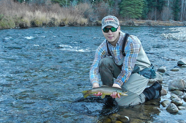 East River Brown Trout
